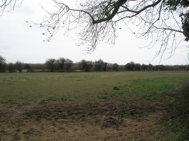 Farmland in between the main road and the railway at Warblington