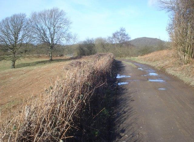 Track on Midsummer Hill