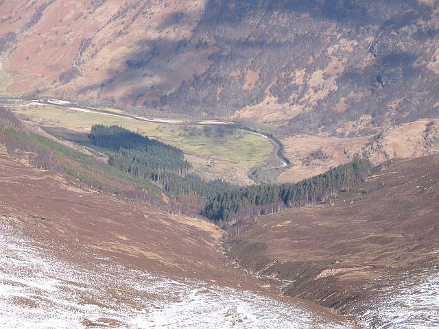 Forest at the foot of Coire Riabhach