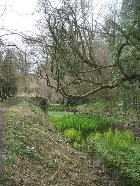 Thames and Severn Canal near Daneway