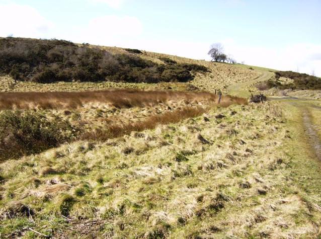 Footpath to Pant-y-ffawydden