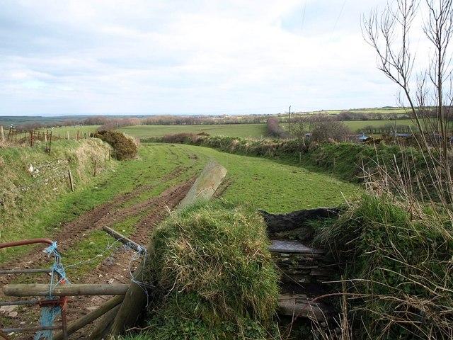 Field and path, Trewassa