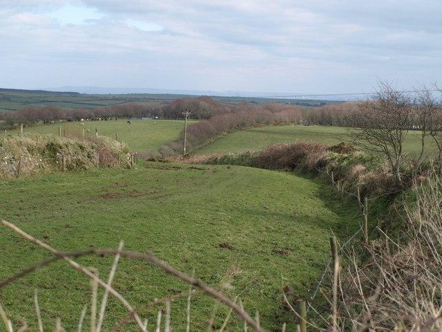 Field at Trewassa