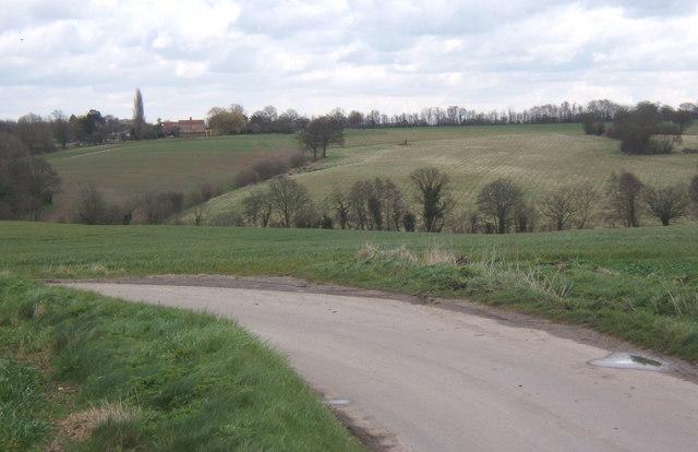 Back lane between Fordham and West Bergholt
