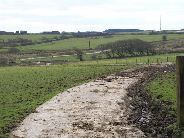 Road to the sewage works,Trewassa