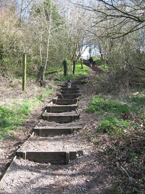 Step Hill