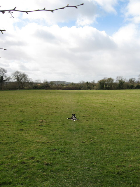 Right of Way across Field