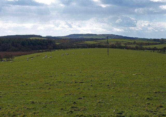 The southwest slope of Dowalton Hill