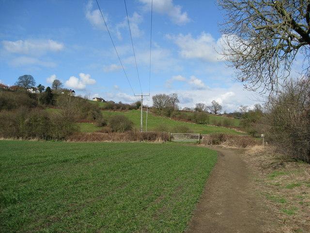 Riverside Footpath View