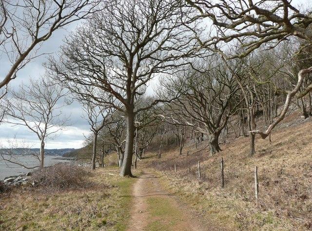 Coastal footpath, Arnside Park, Arnside