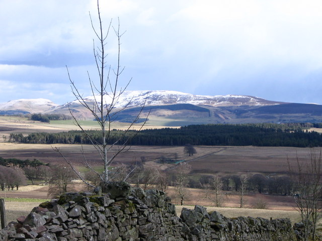 Black Mount from Kerswell