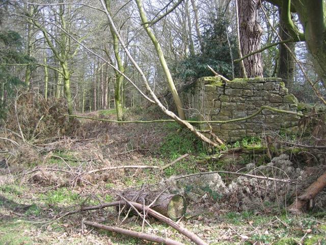 The corner of Ram Wood