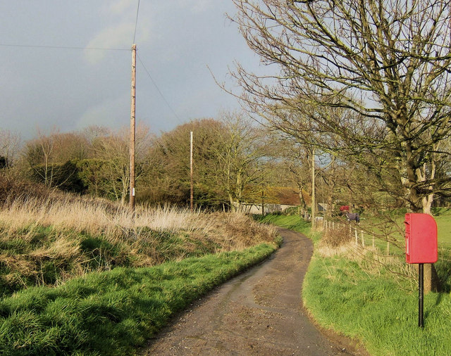 Lane at Tarring Neville, East Sussex