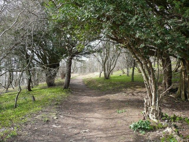 Path into Arnside Park, Arnside