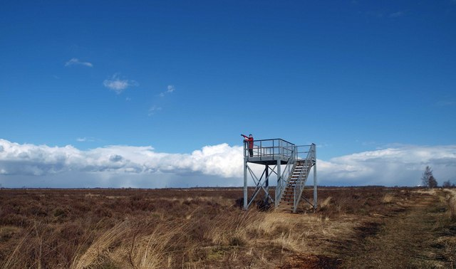 Thorne Moors viewing platform