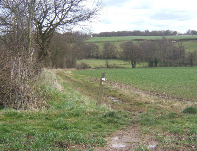 Footpath eventually leading to West Bergholt