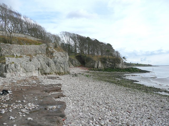 The shore at the cove, Silverdale