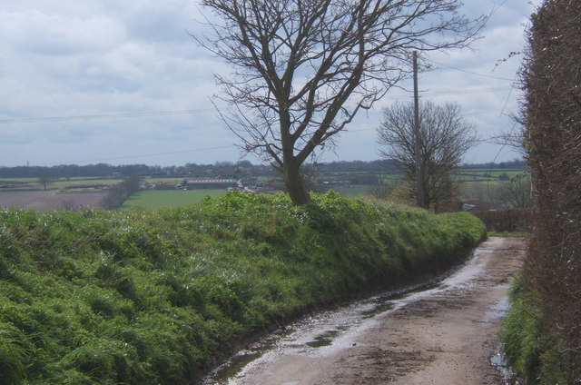 Fossetts Lane, looking south