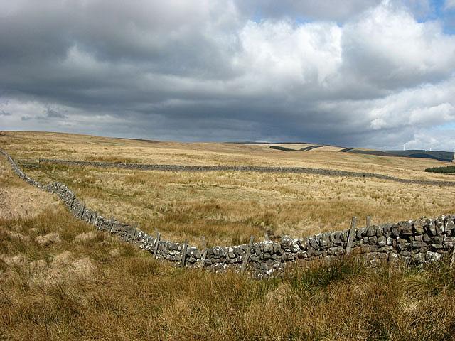 Farmland at Gowd Muir