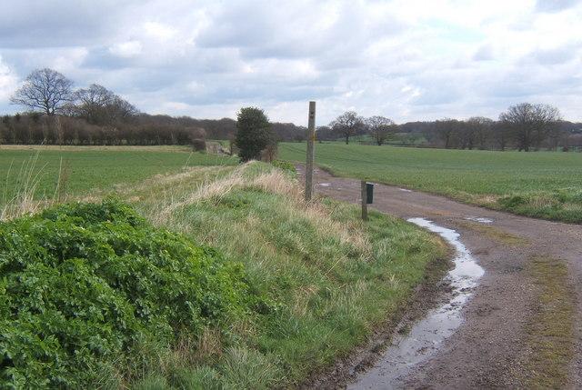 Start of track towards King's Farm