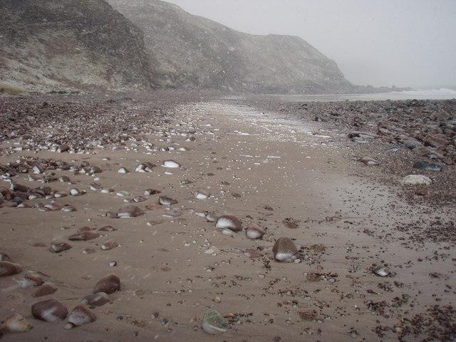 Walking backwards on the beach