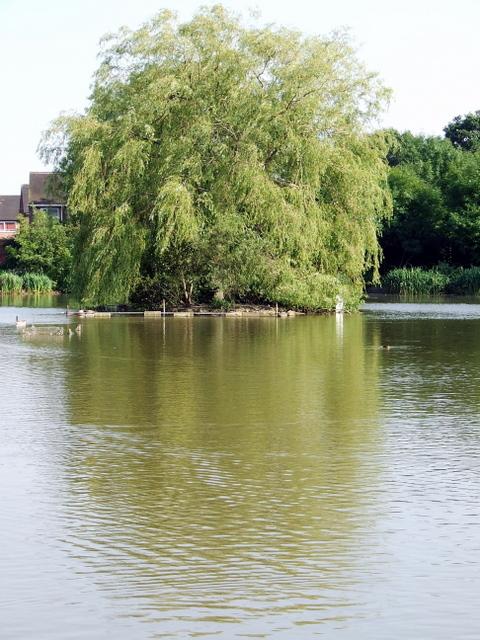 Painswick Park pond