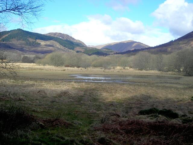 Marshy Ground Near Black Water