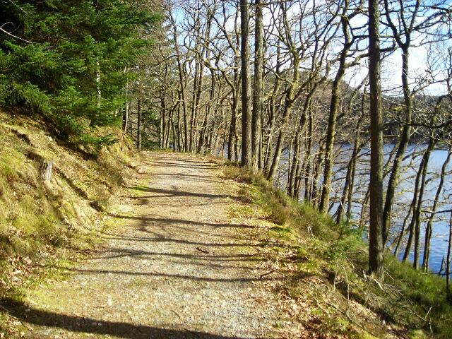 Path Beside Loch Drunkie