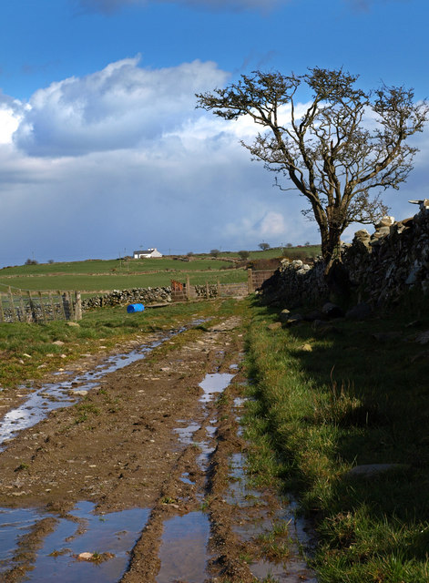 Farm track near Doonhill Cottages