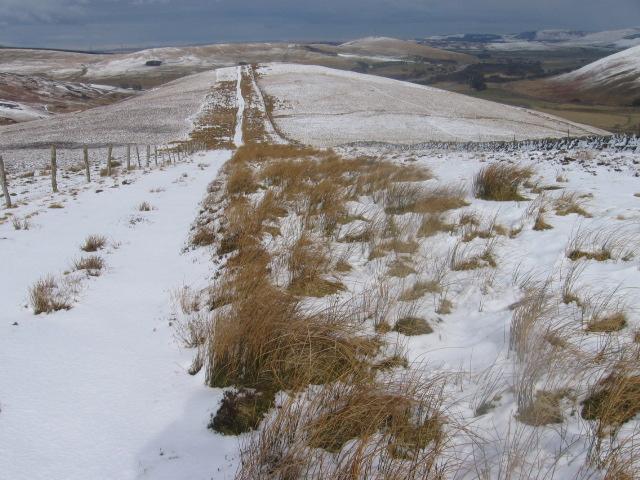 Harryburn Brae towards Kirkton Rig