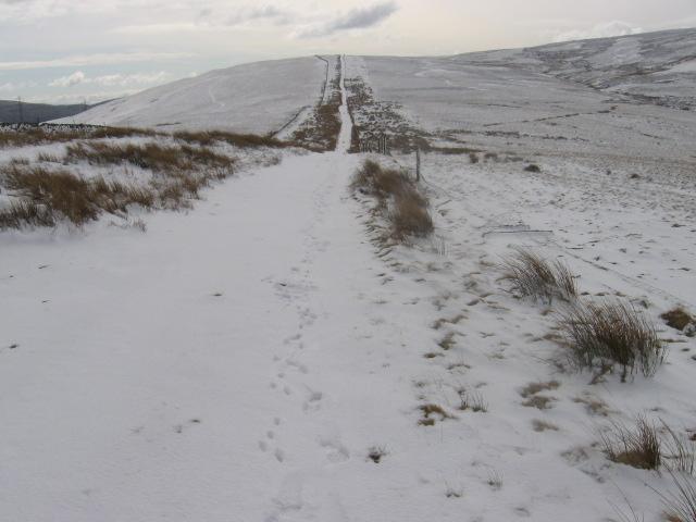 Track on Kirkton Rig to Harryburn Brae