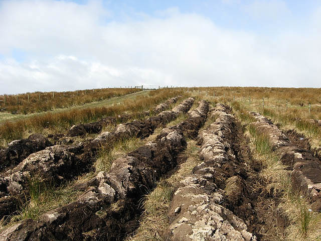 Furrows on Raes Knowes
