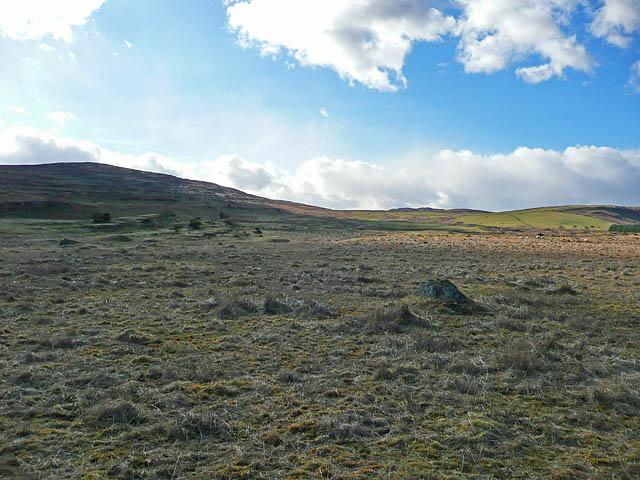 Rough pasture at Dunruchan
