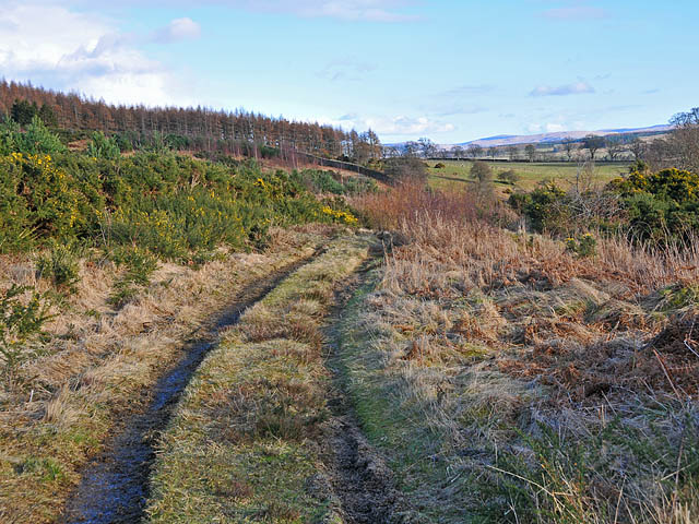 Track to the south of Torlum Wood