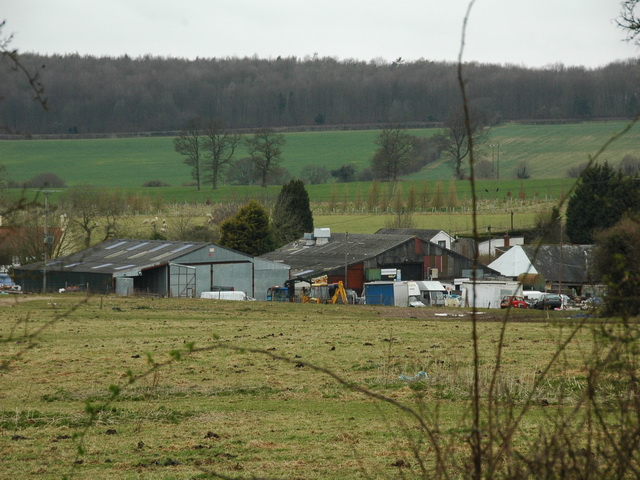Gilbert Street Farm