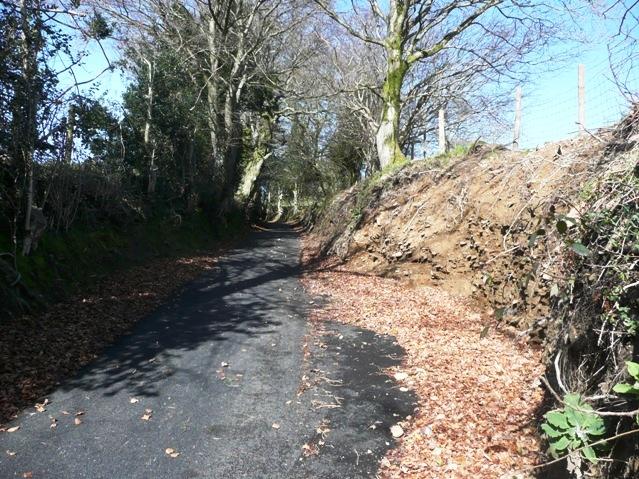 Lane to Twyn yr Oerfel