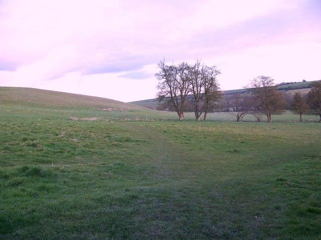 Footpath to Homington