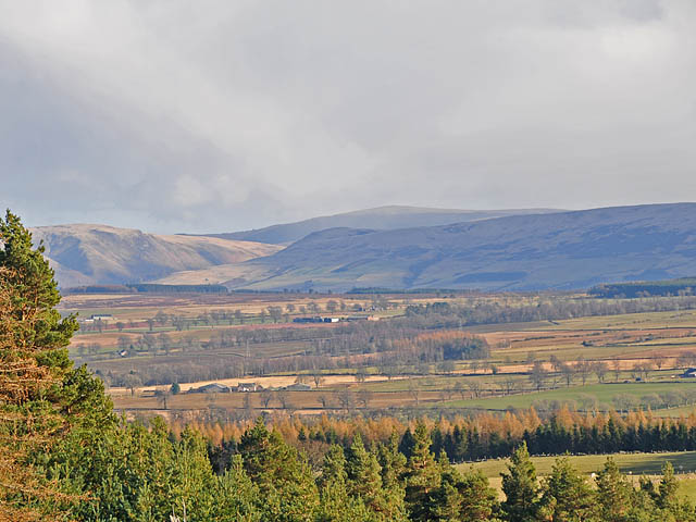 Wether Hill and Glen Eagles from Torlum Wood