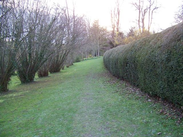 Footpath near Homington House