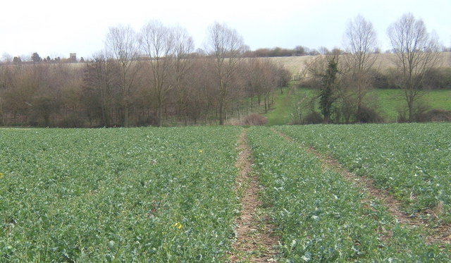 Footpath looking east across the fields towards Fordham