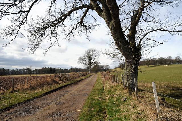 Track to Keillour Lodge