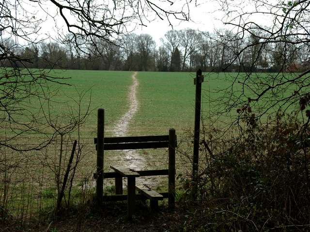 Path from Old Down Wood to Kitwood
