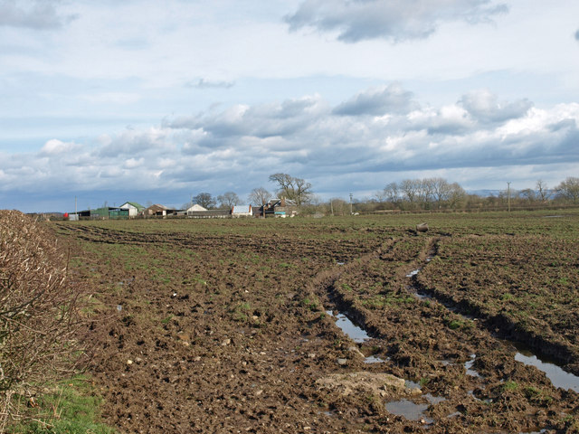 Campingholm Farm