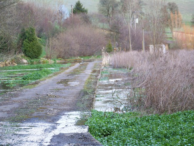 Dis-used watercress beds, Coombe Bissett
