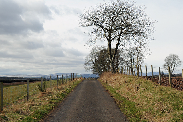 Road to Woodend
