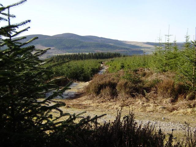 Millstone Hill Path