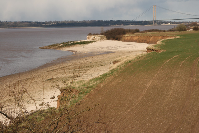 South Ferriby Cliff