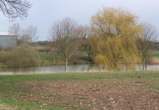 Large pond near Sutton's Farm