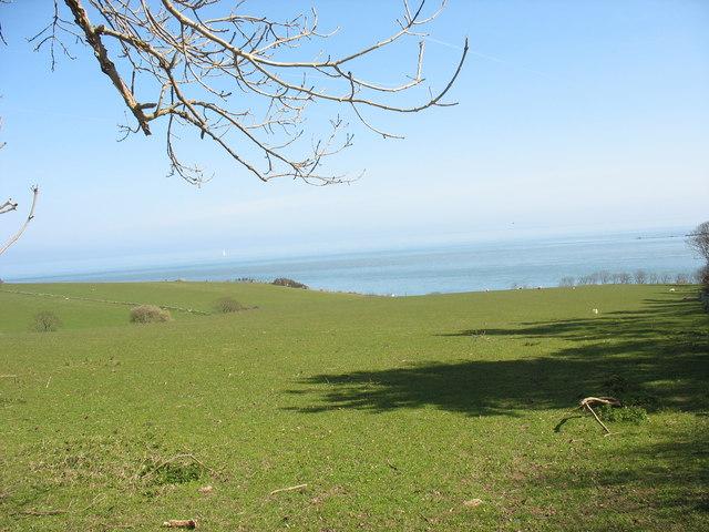 View across sheep pastures towards the coast