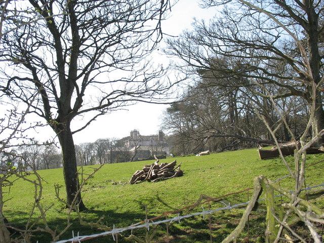 Bryn Fuches Farm